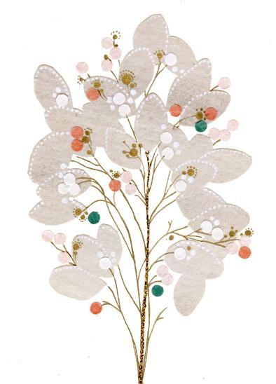 Lunaria Honesty Plant