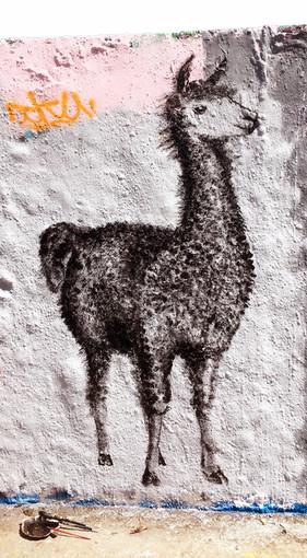 Alpaca Mural