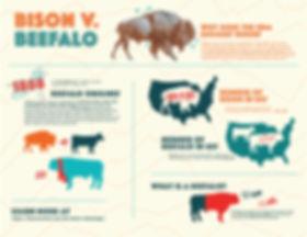 bison infographic 1_Artboard 2.jpg
