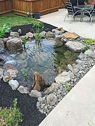 7' x 10' Tadpole Pond