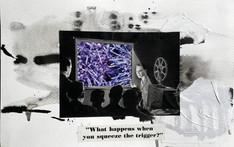The Quarantine Diary #8