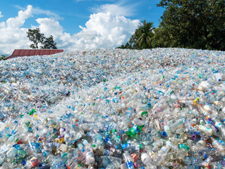 Councils locked out of recycling facilities.