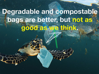 The shocking truth about degradable bags. Recycling still the key. Buying recycled products is cruci
