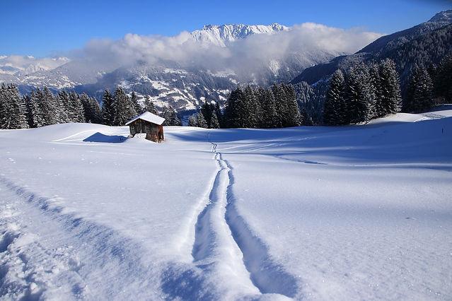 winter-2024112_1920-min.jpg