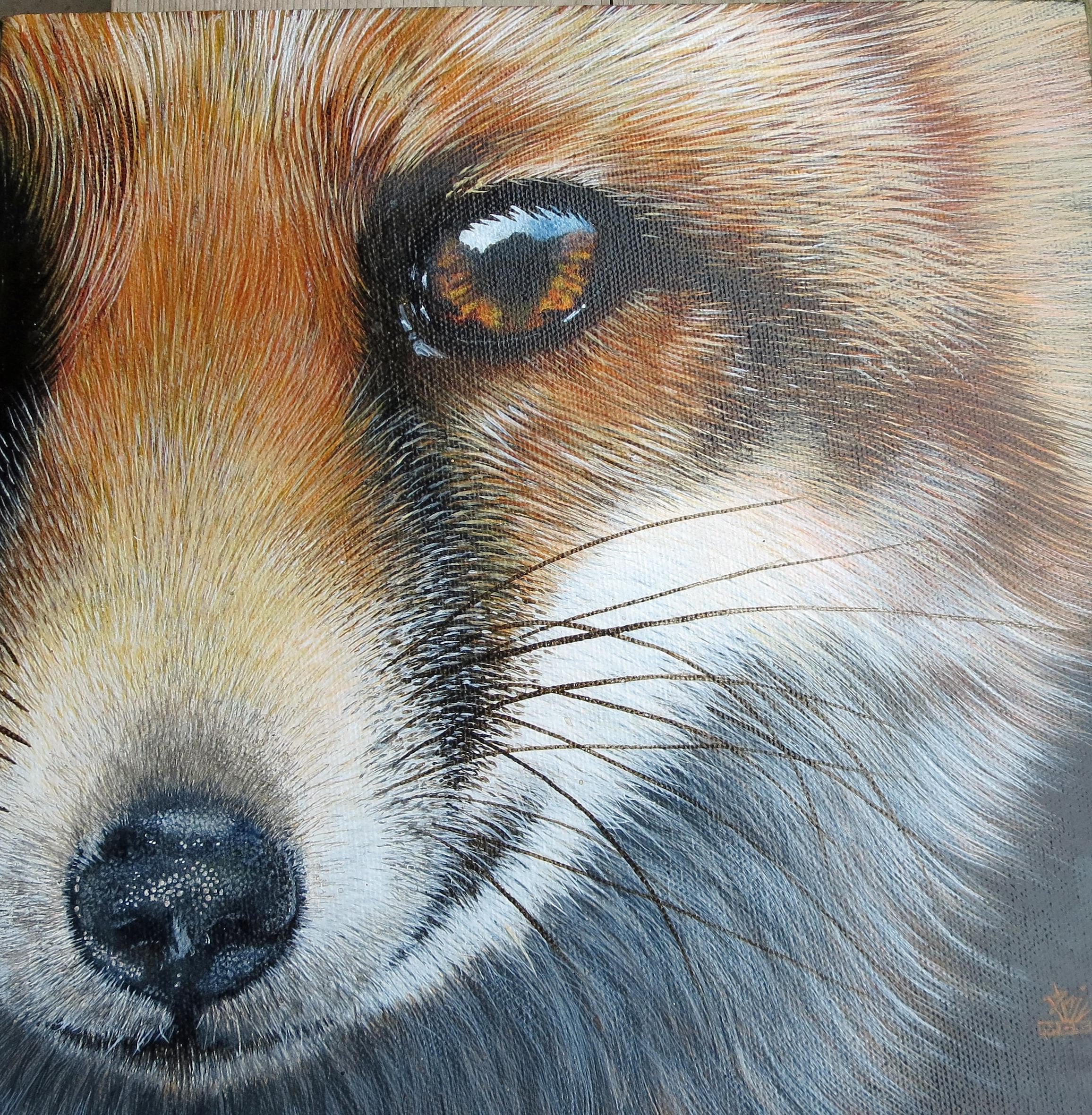 'Foxy Lady'