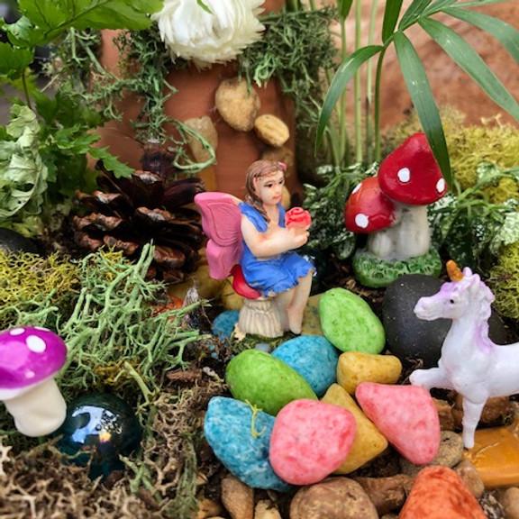 Adult Workshop - Fairy/Gnome Dish Garden