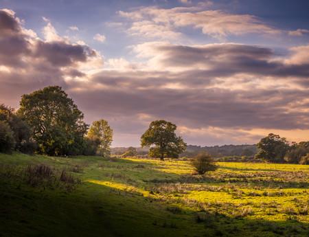 Kenilworth_sunset.jpg