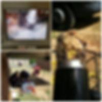 36759970_2122819464667198_50163143977572