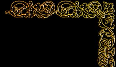 goldflower1_edited_edited_edited_edited.