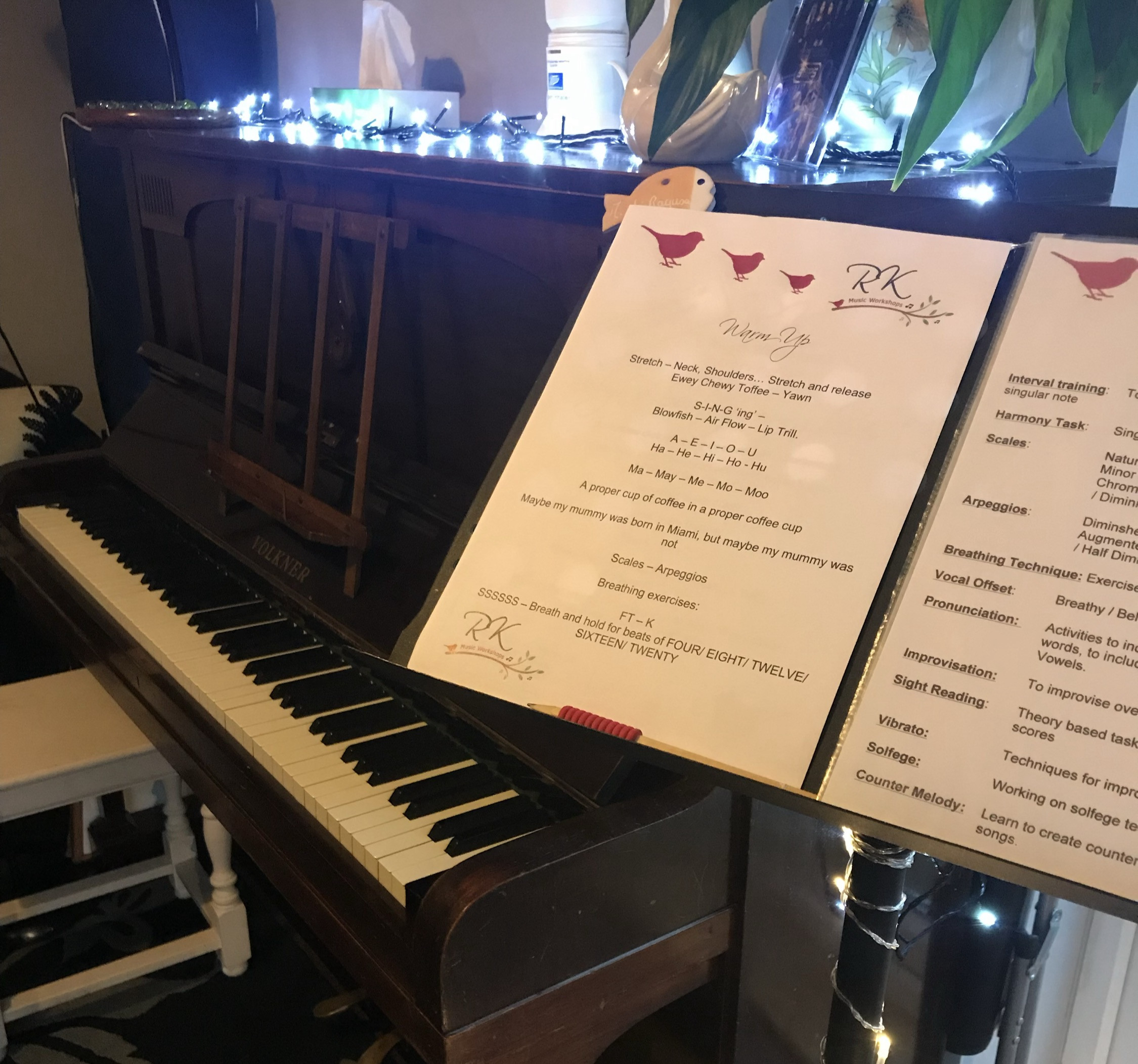 Singing Lessons (1 Hour)