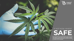 If Not Now, When?: The Impact the SAFE Act Would Have on Capital in the Cannabis Industry