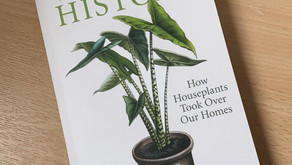 Are you houseplant potty?