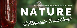 Northern Bruce Peninsula's nature at Mountain Trout Camp