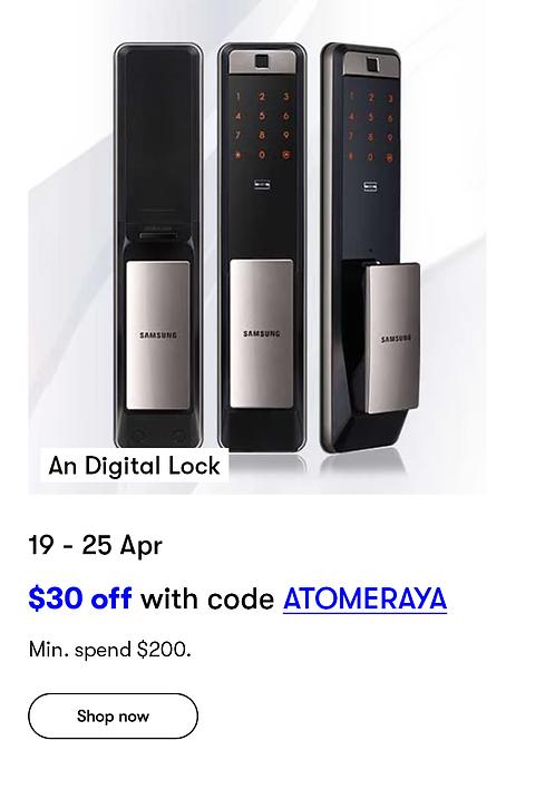 Home-_-Baby-Week__04_An digital lock.png