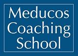 MCS logo 1