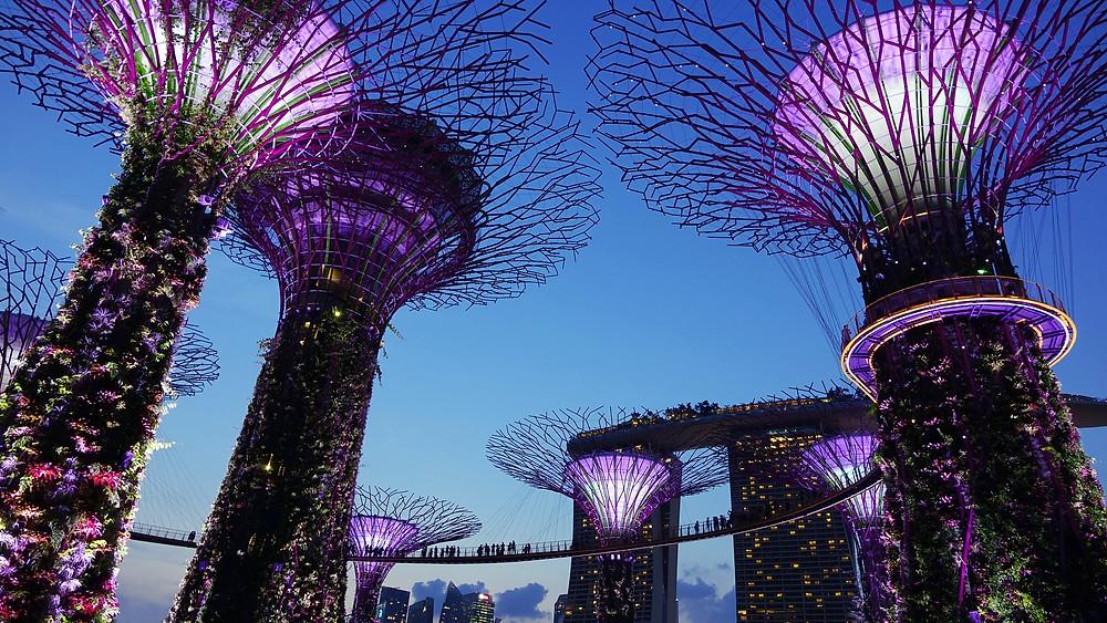 Singapore - Bonjour Toowoomba