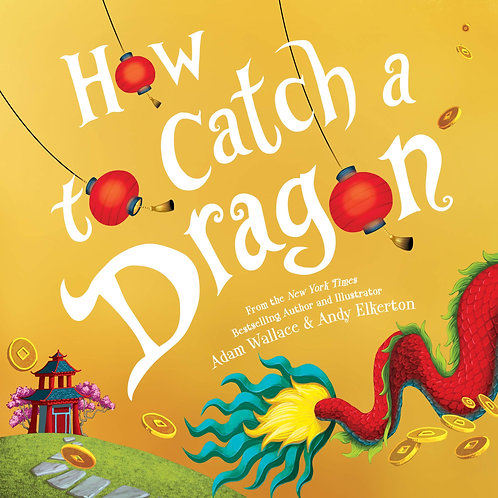 How to catch a dragon - 9781492693697