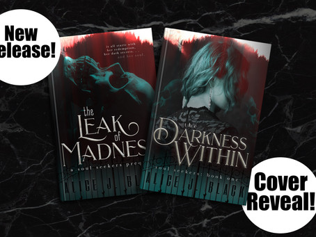 Cover Reveal and New Series Release! Check Out Soul Seekers for a spooky thrill!