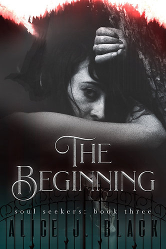 The Beginning by Alice J. Black