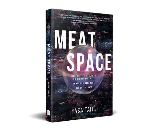 Meatspace by Asa Tait