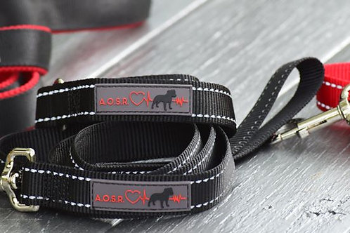 Official AOSR Branded Slip Collar and Lead Combo Black