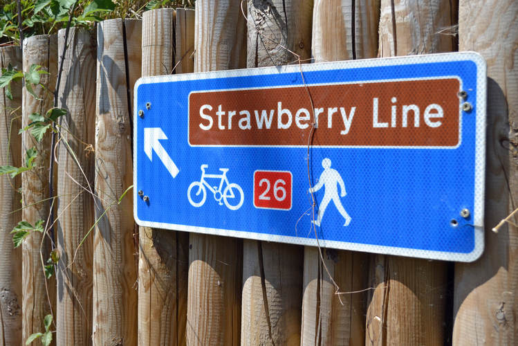 Shared cycleway