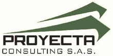 Proyecta Consulting SAS