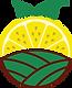 Fresh Lemon Market-O-Color.png