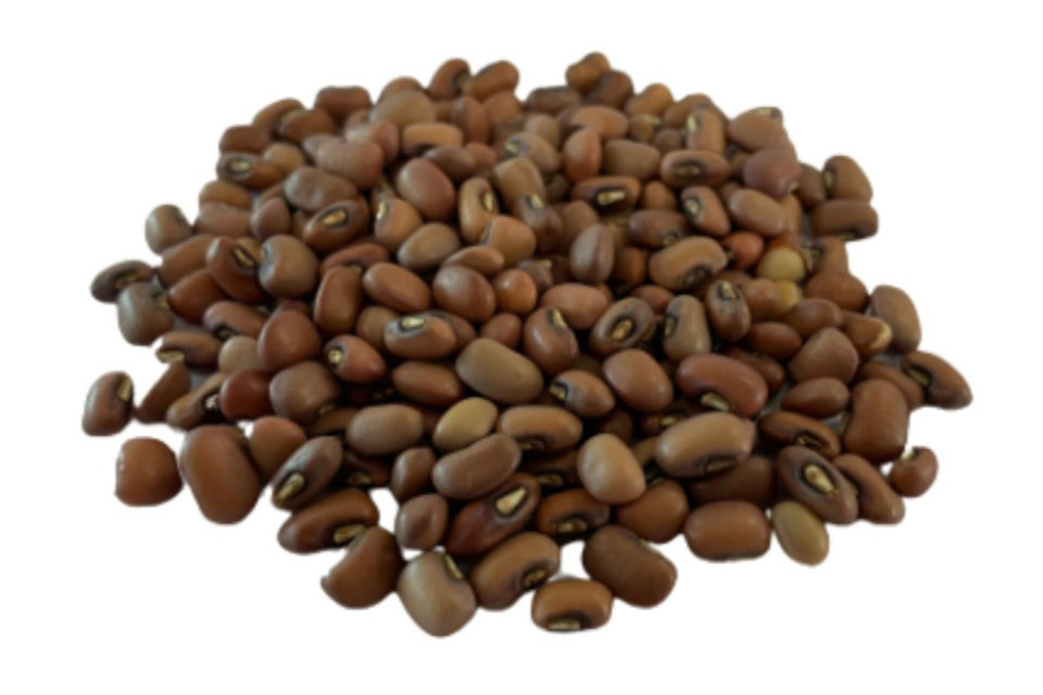 Red Caloona Cow Pea