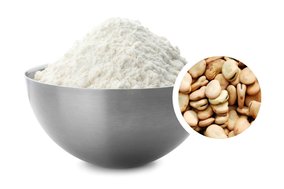 Faba Protein 60