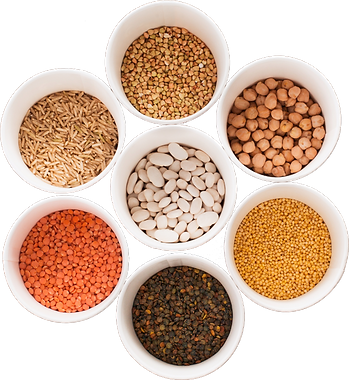 pulses-in-bowls.png