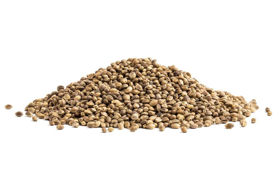 Hulled Hemp Seed - Toasted