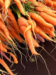 Joy Bland - Photography - Carrots