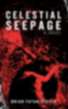 Celestial Seepage KINDLE COVER High Res.