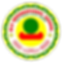 BLCIS Logo.png
