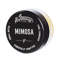 Mimosa Square.png