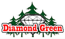 Diamond Green, Tacoma medical and recreational marijuana shop