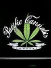 Pacific Cannabis Company, Bremerton pot shop