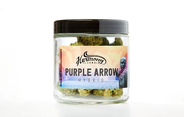 Purple Arrow.jpg