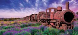 lavendar trainwreck cannabis strain from Washington marijuana supplier represented by rusted train i