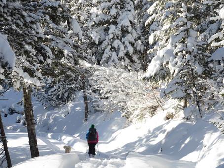 Tuc dera Salana 2483m - Esquí de Montaña