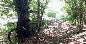 Ruta MTB. Alrededores de Vielha. Pomarola - Tuca - Salient