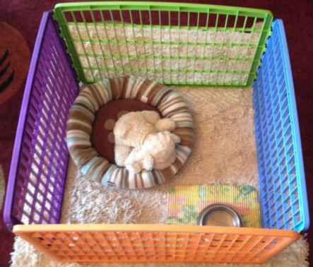 Pet playpens – Keep injured pets confined / potty train new pets.