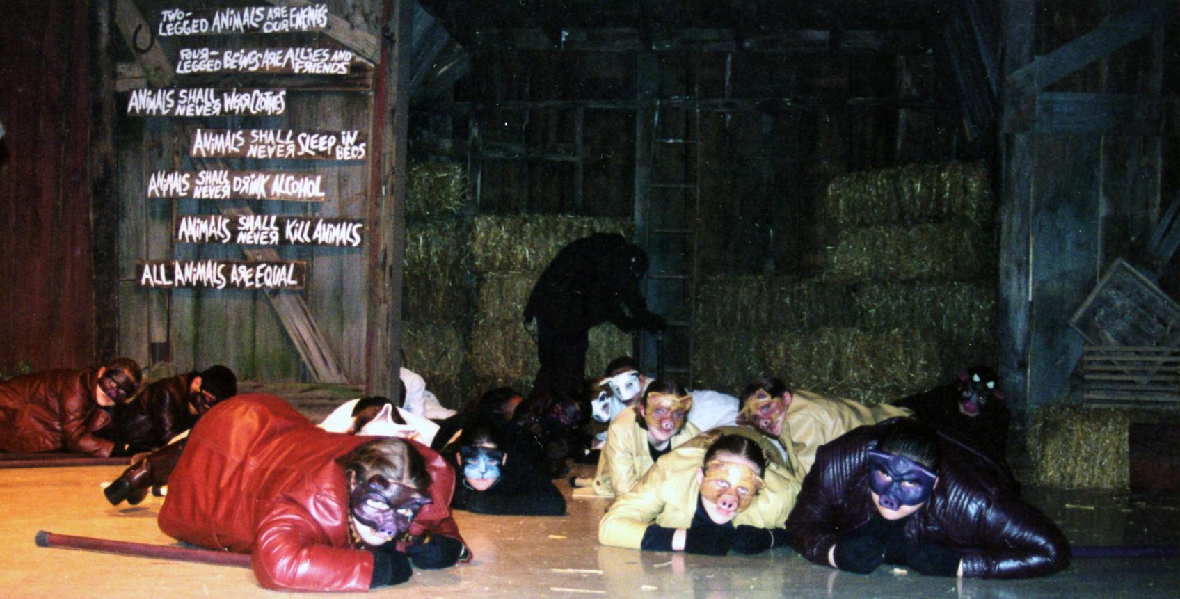 pigs crawling