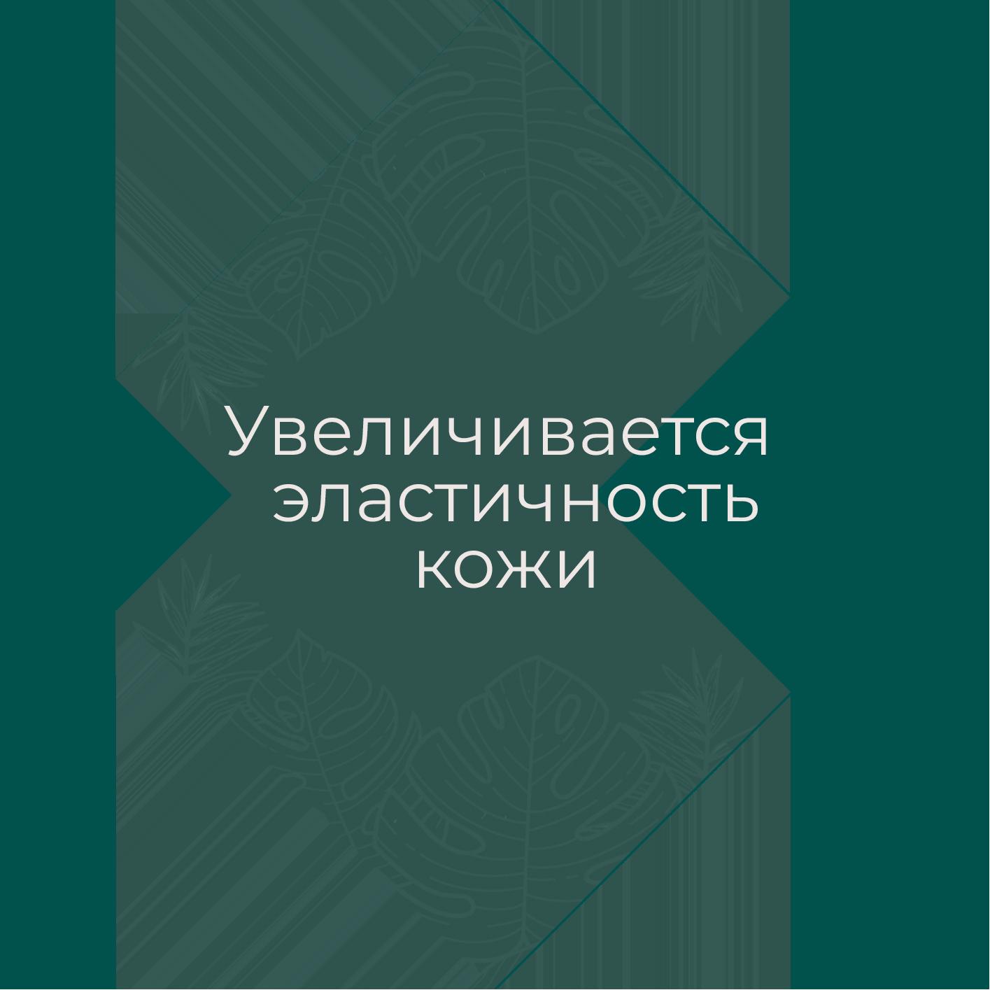 кк (2)