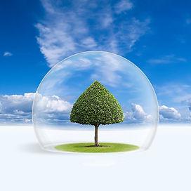 fresh_air 1.jpg