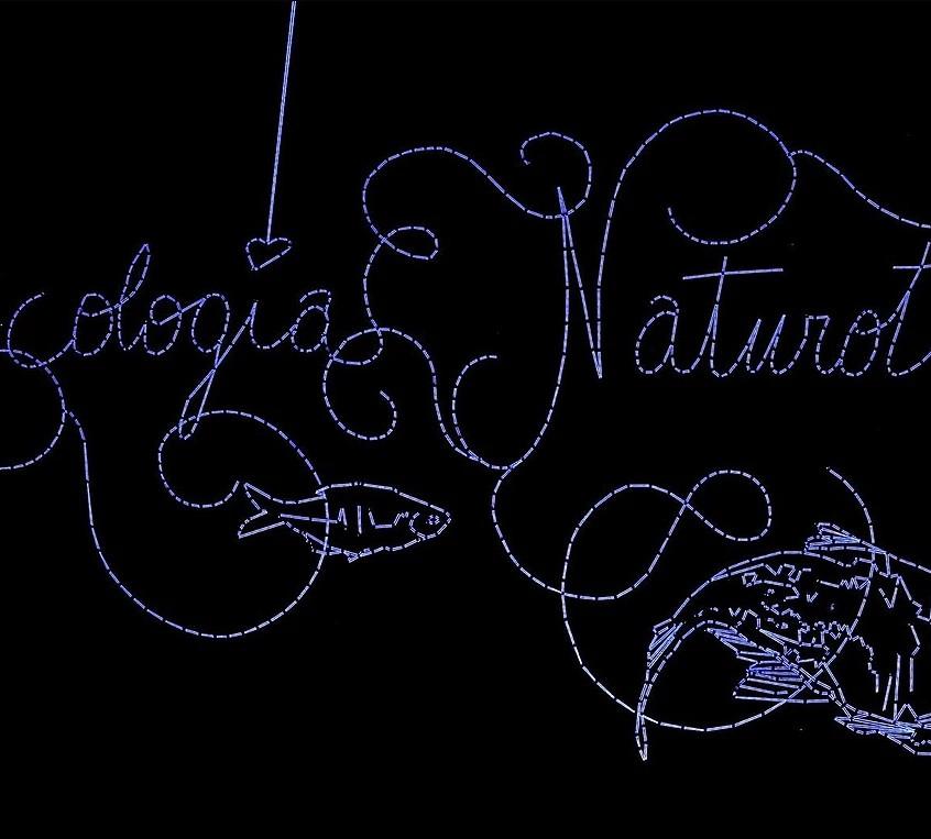 Ecologia Naturotica | Julien Salaud