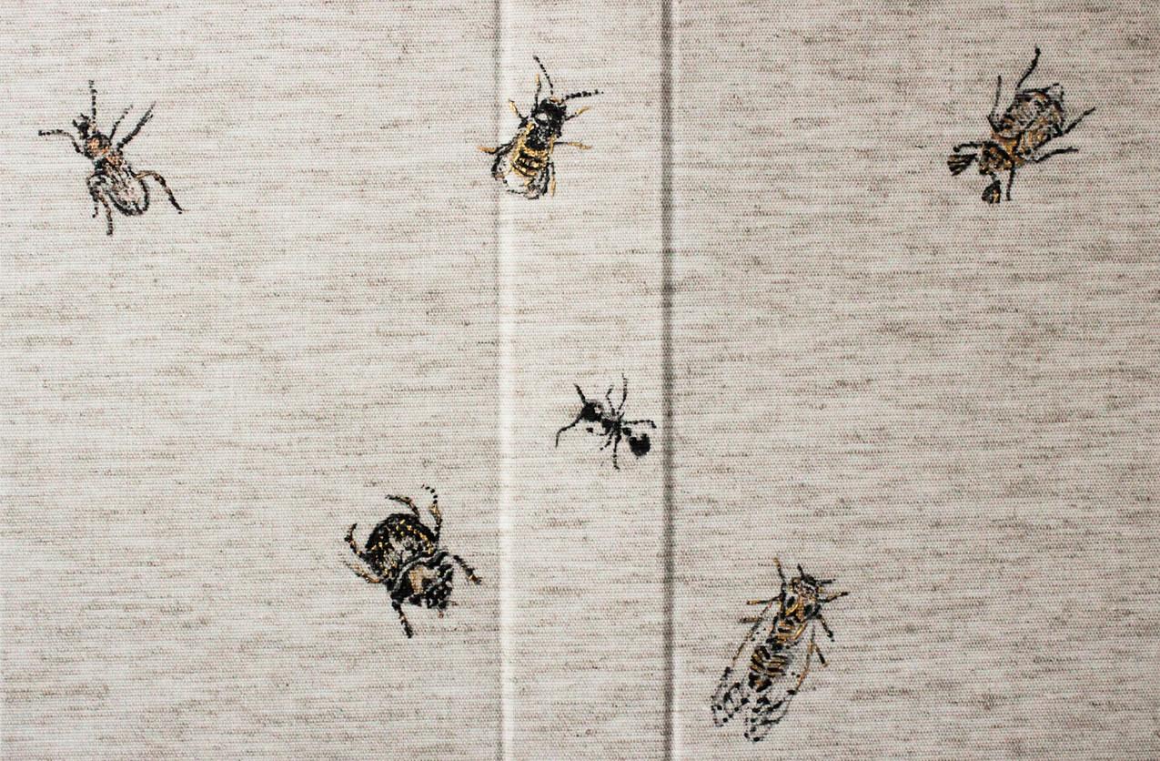 Carabe doré, Abeille maçonne, Hanneton des pins, Bolbocère, Fourmi, Cigale