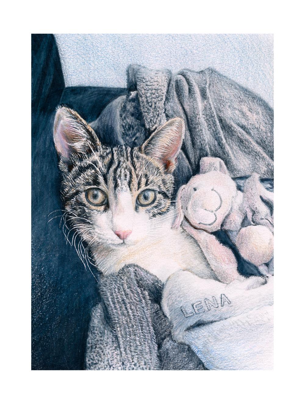Le chat et le doudou