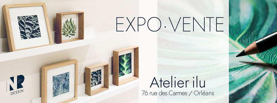 expo vente collection nr dessin orléans